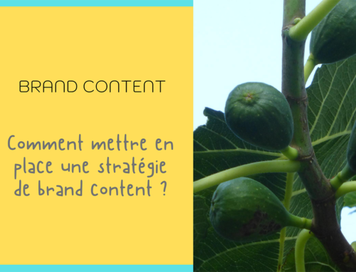 Brand Content, le contenu en étendard avec Amande Epicée