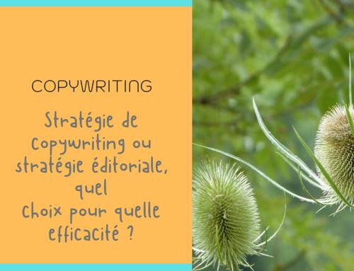Stratégie de Copywriting, déléguer pour mieux réussir