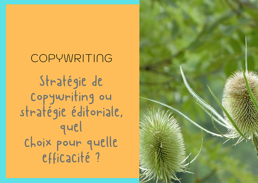 Stratégie de copywriting