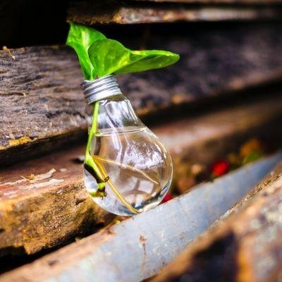 L'innovation et les valeurs au coeur d'un référencement naturel puissant