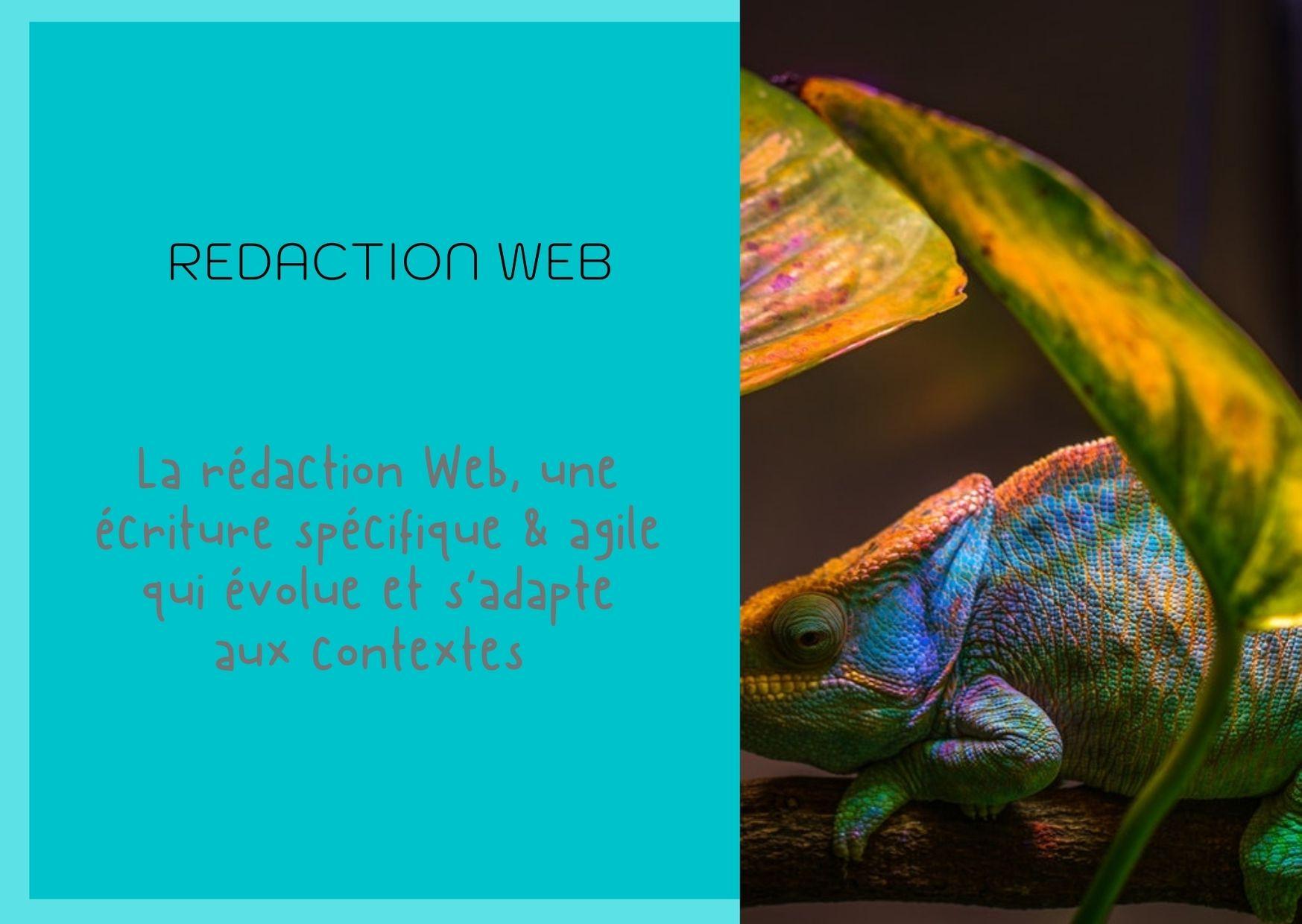 Rédaction_web_écriture_caméléon_s'adapte_contextes