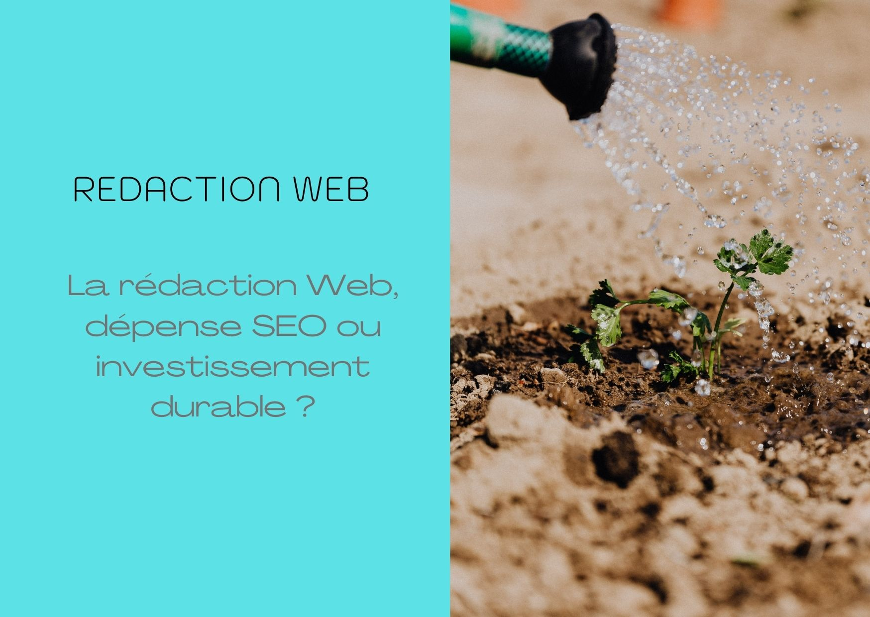 rédaction_web_investissement_ou_dépense.